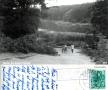 1960-11-08-schlachtensee-klein