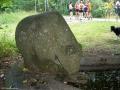 2006-07-09-cimg9308-klein