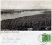 1956-grunewaldturm-blick
