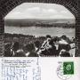 1959-blick-vom-grunewaldturm