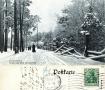 1907-grunewald-zaun-im-winter-klein