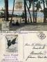 1916-07-08-wannsee-klein