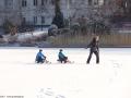 2012-02-03-halensee-46-klein