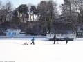 2012-02-03-halensee-52-klein