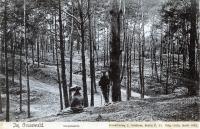 1905-grunewald-unbekannt-vllt-havelbergeklein