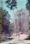1978-ca-grunewald-vmtl-am-havelberg-klein