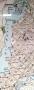 1860-grunewald-ohne-havelchaussee