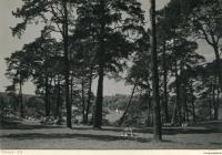 1963-havelhoehenweg-04-klein