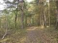 2009-11-01-cimg5470-klein