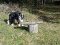 2011-10-09-dsc06045-klein