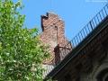2012-06-17-028-hundekehle-klein