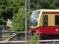 2012-06-17-035-hundekehle-klein