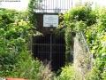 2012-06-17-224-hundekehle-klein