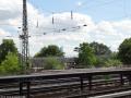2012-06-17-242-hundekehle-klein