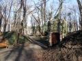 2012-03-03-dsc08553-klein