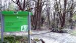 2014-04-02-jaczo-schlucht-004-klein