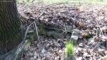 2014-04-02-jaczo-schlucht-021-klein