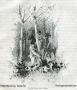 1891-g-k-in-1902-berdrow-ausheben-der-sau