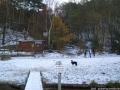 2005-11-27-cimg5646-klein