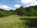 2012-05-27-94-klein