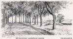 1920-max-brueckner-landstrasse-bei-lindwerder-klein