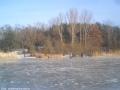 2006-01-29-cimg6745-klein