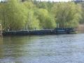 2009-04-13-cimg1077-klein