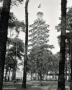 1936-08-00-kdf-stadt-grunewald-2-klein-a