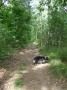 2008-05-28-cimg3179-klein