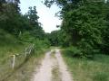 2008-05-28-cimg3168-klein