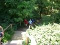 2006-07-01-cimg9236-klein