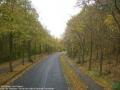 2006-10-29-cimg1665-klein