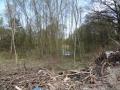 2013-04-24-pichelswerder-031-klein