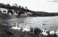 1893-03-pichelswerder-2-klein