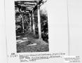 1960-pichelsberg-pavillon-1