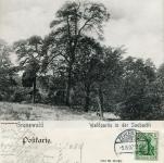 1907-08-05-an-der-saubucht-doppelbild-2-klein
