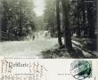 1910-02-02-an-der-saubucht-klein