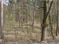 2009-april-04-filmaufnahmen-bilderbuch-grunewald_11-klein