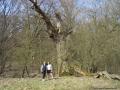 2009-april-04-filmaufnahmen-bilderbuch-grunewald_70-klein