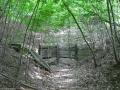 2008-05-28-cimg3204-klein