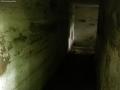 2008-05-28-cimg3207-klein