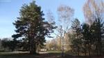 2014-11-17-ruhleben-087-klein