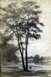 1883-albert-schwartz-c-eckenrath-schildhorn-klein-3