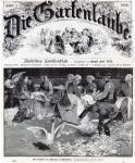 1887-schildhorn-schwaenerupfen-klein-a