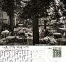 1965-schildhorn-wienerwald-klein
