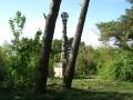 2008-05-07-cimg2631-klein