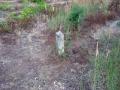 2006-07-20-cimg9537-klein