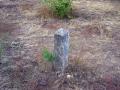 2006-07-20-cimg9538-klein