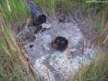 2006-07-20-cimg9542-klein