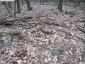 2007-02-24-cimg2884-klein